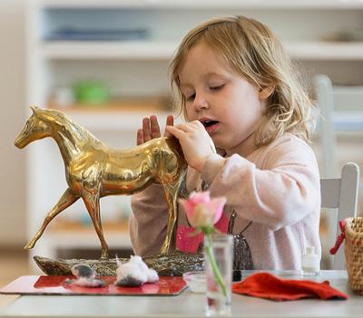 Girl Polishing Horse